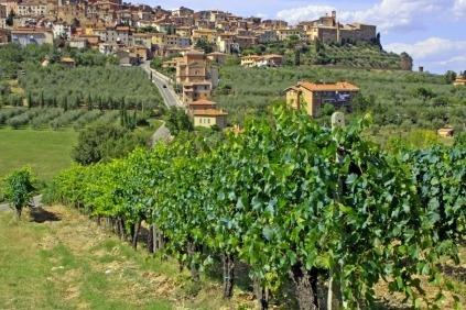 Dejlige vine og flotte landskabet præger denne tur