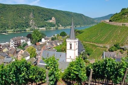 Der er noget fascinerende ved Rhinen