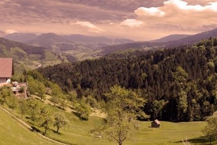 Velkommen på en fantastisk rejse til Schwarzwald