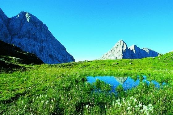Velkommen til rundrejse i altid skønne Østrig